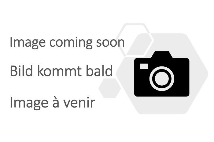 Gabelstapler mit Palette steht auf der Premium Laderampe